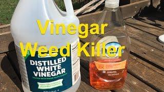 Vinegar and Dish S๐ap Weed Killer