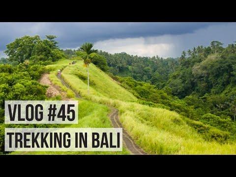 VLOG #45 | TREKKING THROUGH THE JUNGLE IN BALI