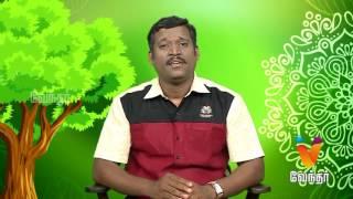 Maruthilla Maruthuvam 19-06-2017 Putham Puthu Kaalai Vendhar tv Show – Episode 1023