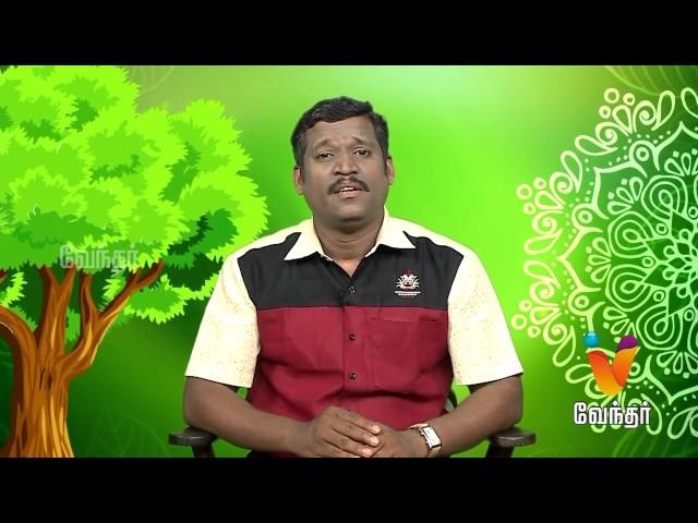 Maruthilla Maruthuvam |Putham Puthu Kalai| (19/06/2017) | [Epi-1023]