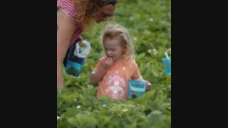 Redberry Farm.wmv
