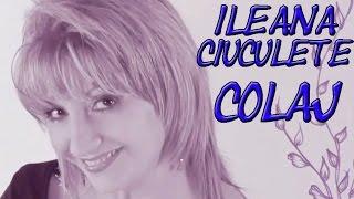 Ileana Ciuculete - Muzica De Petrecere (COLAJ VIDEO 2014)