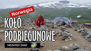Baixar Niezwykly Swiat - Norwegia - Koło Podbiegunowe