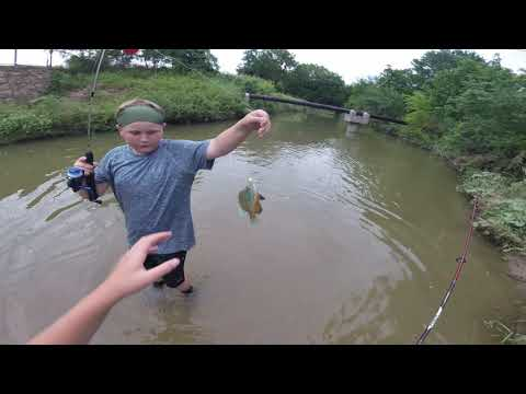Catching bait in a little creek and showing how to make my bait recipe