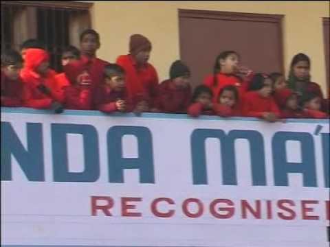 patriotic rally, parade by school kids followed by cultural program