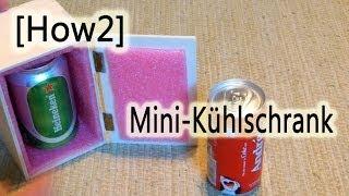 [How2] Mini Kühlschrank selbst gebaut!