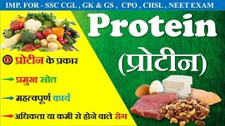 Protein (प्रोटीन) || Types - High Protein Food || NEET || NCERT(Hindi) || Source of Protein