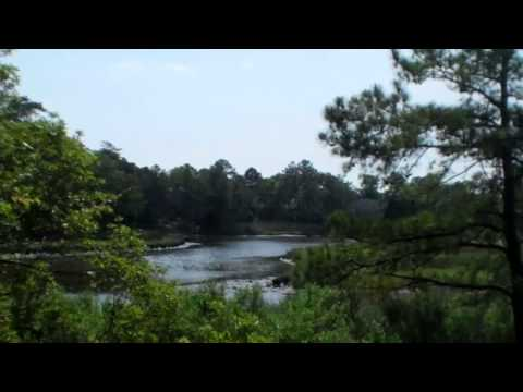 Waterfront home for sale in Great Neck area of Virginia Beach-Real Estate-Agent-2369 S Wolfsnare