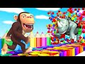 Learn fruits and Animals with funny Monkey 1