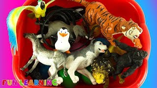 Learn Animals Names with Toys Kids Learn Phonics Educational Video