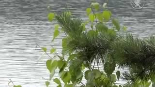 Голубі озера стають платними  Телеканал Новий Чернігів