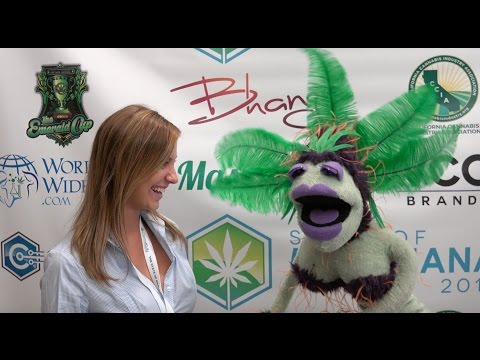 """420 Time with Mary Juana"" ~ Hit #6 ~ The State of Marijuana Conference 2015"