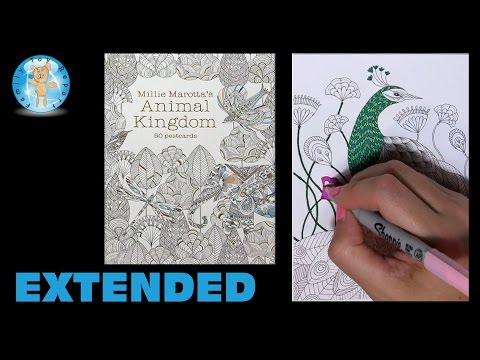 Millie Marotta's Animal Kingdom Postcards Adult Coloring Book Peacock Extended - Family Toy Report