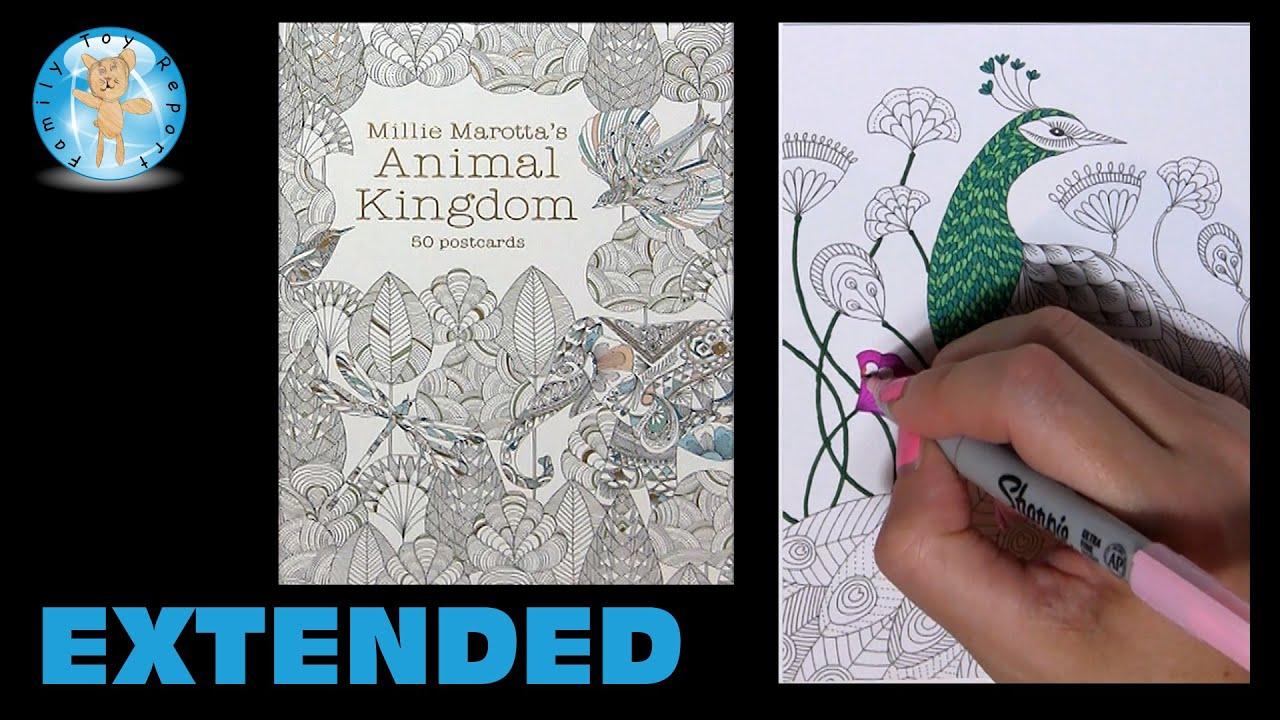 Millie Marottas Animal Kingdom Postcards Adult Coloring Book Peacock Extended