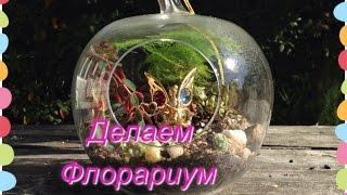 флорариум (сад в бутылке) Садо-Терапия🌺💕(Все о том как сделать Флорариум, ( какие растение выбрать, как посадить, что нужно для проекта) Весь процесс..., 2015-09-27T23:18:25.000Z)