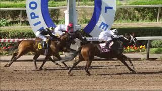 Vidéo de la course PMU PREMIO ESCUELA NAVAL ARTURO PRAT