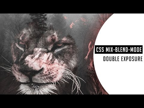CSS Double Exposure animation Effect | CSS mix-blend-mode property