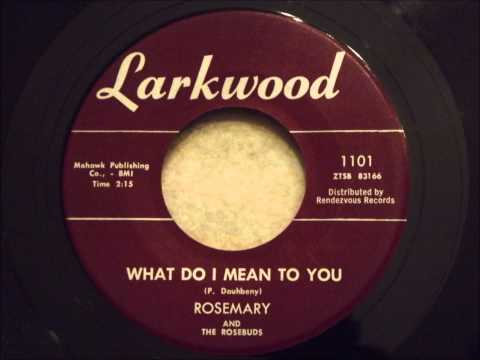 Rosemary and The Rosebuds - What Do I Mean To You - Nice Ballad