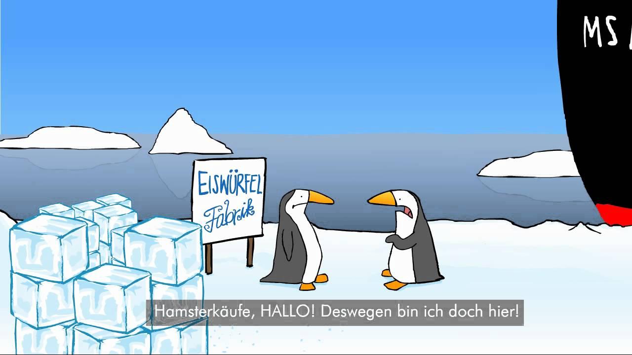 Lustige Pinguine - Hamsterkäufe - YouTube