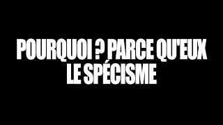 POURQUOI ? PARCE QU'EUX #2 - LE SPÉCISME