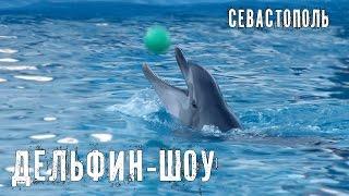 """Dolphin show. Дельфин шоу  в Севастополе. Мастер-класс от морских котиков - """"настоящих кавалеров"""""""