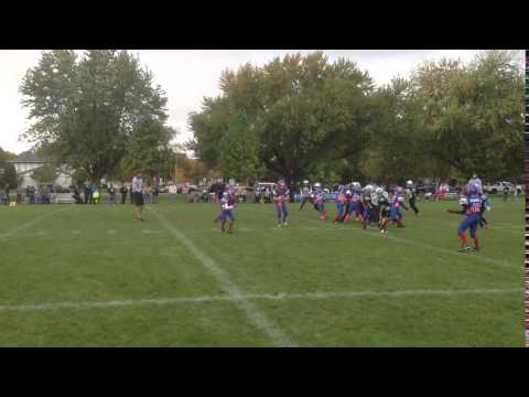Geraci McCormick Flea Flicker Bears 2014