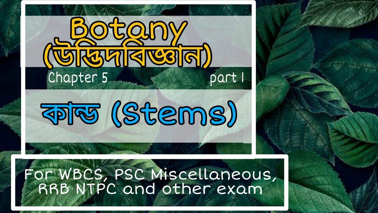 Botany (উদ্ভিদবিজ্ঞান) #Stems #কান্ড #Types of steam