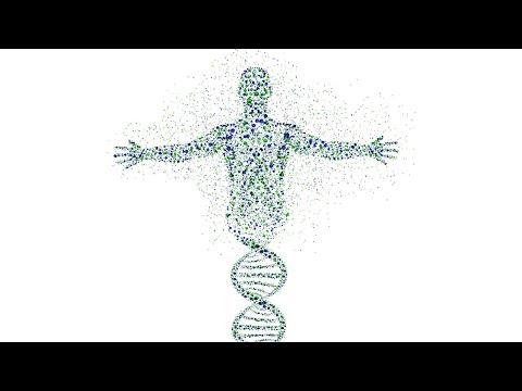 Hangman Influenced - Artificial Intelligence Genetics Algorithm - Northeastern Illinois University