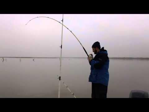 oklahoma winter time blue cat fishing