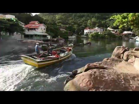 Cultural traveling experience to Brazil - Discover Barra da Lagoa fishing village
