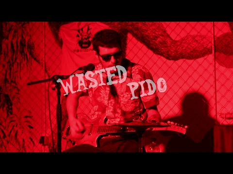 Wasted Pido (Kavez 10.2.2017.)