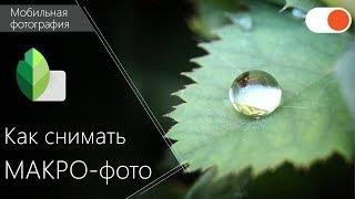 Как сделать красивое МАКРО-фото - Уроки мобильной фотографии