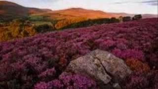 Play Flower Hill Trail