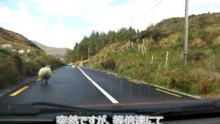 2013年5月のケリー周遊路とディングル半島の車載動画です。その6ではア...