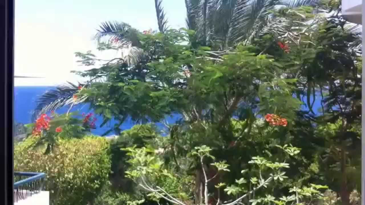 Family Villa - Sultan Gardens Sharm el-Sheikh - YouTube