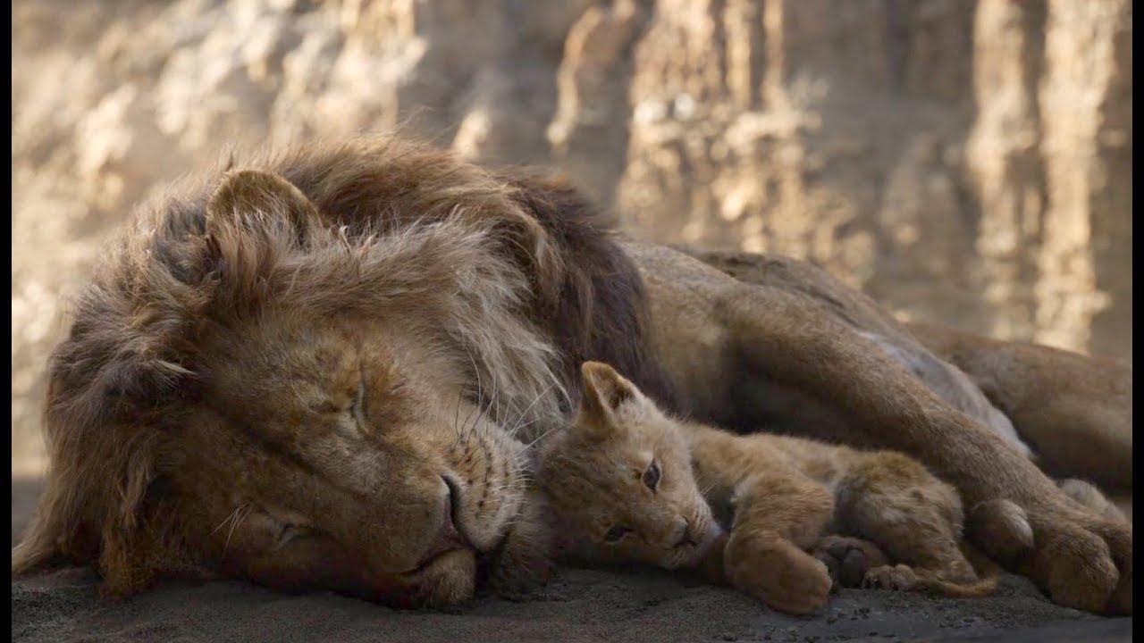 The Lion King 2019 - Simba Memorable Moments