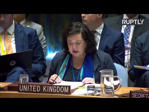 UN Security Council meeting on Salisbury poisoning case