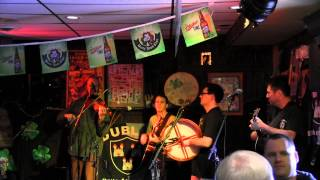 The Donnybrooks - Sally Gardens / Joe Cooley