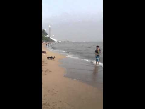 พาลูก ๆ ไปเที่ยวทะเล6