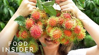 13 Extraordinary Fruits Around The World