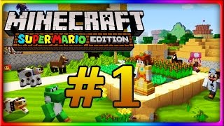 Let's Show MINECRAFT WII U EDITION | Mario Mashup Pack | Mario-Welt Part 1
