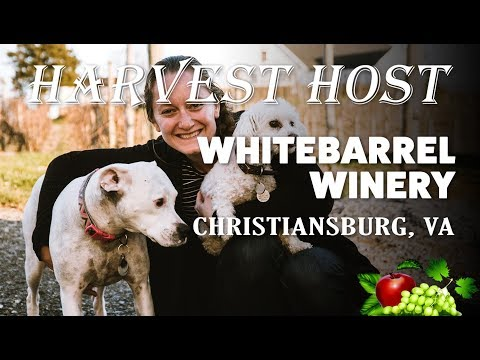 Harvest Host Free Camping at Whitebarrel Winery in Virginia - YouTube