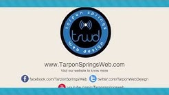 Website Design in Tarpon Springs Florida by the Internet Marketing Experts