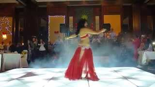 very good egyptian bellydance performance