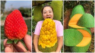 😍Farm Fresh Ninja Frขit   Tik Tok China   (Oddly Satisfying Fruit Ninja) #64