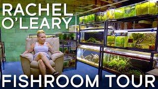 Touring Rachel O'Leary's Fishroom in 4K