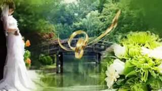 All Angels ~ Songbird