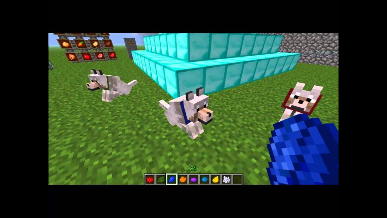 Os melhores e mais novos jogos de minecraft de pintar, desenho, blocos, zumbi,. Minecraft 3: como pintar as coleiras dos cachorros do