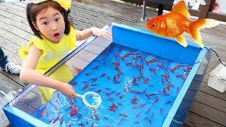金魚すくいボラム恐怖の特別訓練ふり遊び釣り