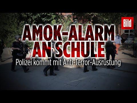 Schülerin (14) mit Waffe bedroht: SEK-Einsatz an Goethe-Schule in Hamburg